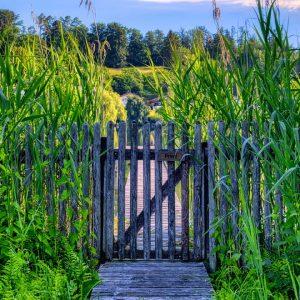 Portail de clôture : guide complet pour réussir votre projet
